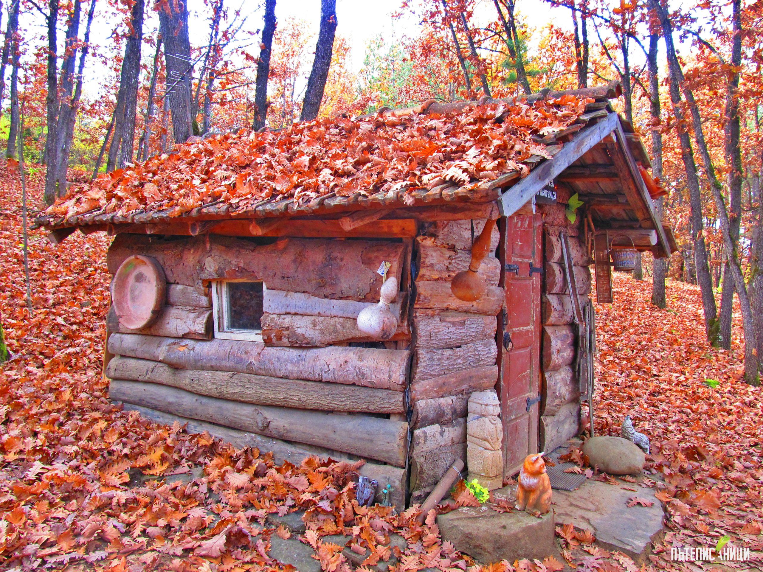 Къщата на бабата на Червената шапчица